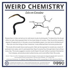 Visit the post for more. Chemistry Posters, Chemistry Worksheets, Chemistry Lessons, Teaching Chemistry, Science Chemistry, Science Geek, Organic Chemistry, Science Lessons, Science Education