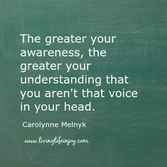 Have you every wondered who is that voice in your head with all those opinions?