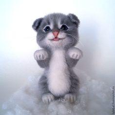 Котенок - подкидыш - серый,белый,кот,котенок,котейка,пушистый котенок