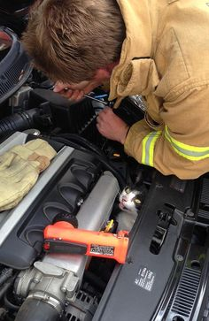 A firefighter removes part of the engine to rescue the trapped cat