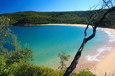 Maitland Bay Track & Shipwreck, The Central Coast NSW