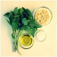 Mint Pesto   Mint Sprinkles Recipes