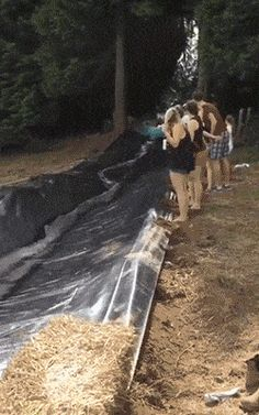 21 Best GIFs Of All Time Of The Week #153 from best GOAT and Best of the Web