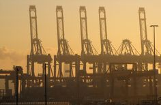 https://flic.kr/p/aEVCJo | Rotterdam, Maasvlakte. | Dockyard cranes catch the winter sun at a misty Maasvlakte, Rotterdam Europoort