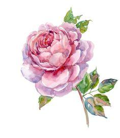 Vegetables, Flowers, Vegetable Recipes, Royal Icing Flowers, Flower, Florals, Veggies, Floral, Blossoms