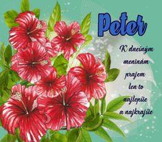 29.6 meninové priania Peter Peter K, Plants, Plant, Planets