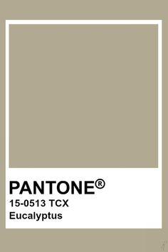 pantone eucalyptus - Google Search Pantone Tcx, Pantone Swatches, Color Swatches, Pantone Color Chart, Best Color Schemes, Benjamin Moore Colors, Color Stories, Color Pallets, Color Theory