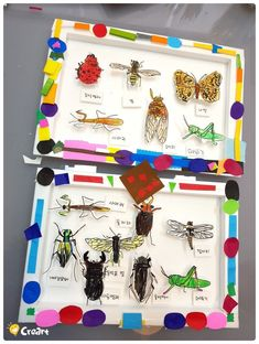 Good alternative to pinning real bugs Fall Arts And Crafts, Diy Crafts For Kids, Projects For Kids, Art Projects, Art Drawings For Kids, Drawing For Kids, Painting For Kids, Kids Art Class, Art For Kids