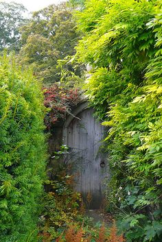 Secret Garden gate in Castle Combe, Wiltshire
