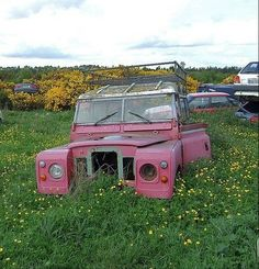 An old pink Landrover with one head lamp missing surrounded by buttercups and 'enjoying' it's retirement in the scrapyard. Abandoned Cars, Abandoned Places, Abandoned Vehicles, Cars Land, Old Boats, Land Rovers, Barn Finds, Land Rover Defender, Range Rover