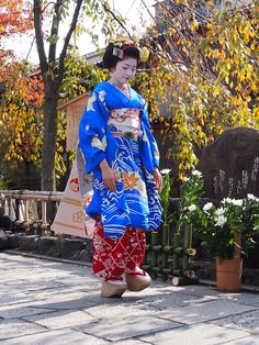 2012/11/7 かにかくに祭 - Giwon Satsuki