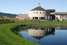 Havelock North, Fine Wine, Wineries, Murals, New Zealand, Vineyard, Range, Mansions, House Styles