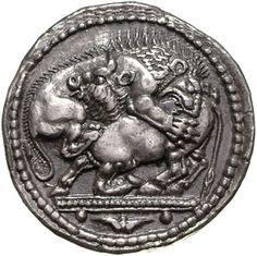 Tetradracma - argento - Akanto, Macedonia, Grecia (470-460 a.C.) - un leone assalta e dilania un torello - Münzkabinett, Berlin