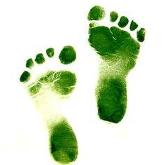 Go green baby! Go Green, Green Colors, Green Tips, Green Ideas, Jeff Green, Green Fruit, Fresh Green, Homemade Solar Panels, Concours Photo