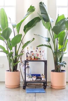 """A """"Danish Tropical"""" Loft in Downtown LA 