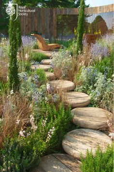 A Room with a View Garden; a lovely way to create a path through your garden, with great plants for bugs, bees and birds too!