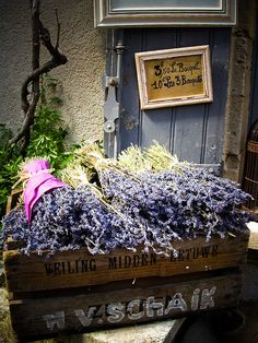 How great would it be to walk down to the market and pick up lavender  and of course the market is in Provence!!!