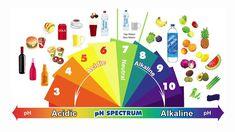 I 27 alimenti più alcalini: prevengono il cancro, proteggono il cuore e fanno perdere peso