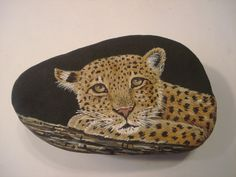 Leopard hand painted on a stone by Ann Kelly.