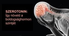 Így serkentsd az idegrendszered boldogsághormonnal természetesen, mellékhatások nélkül! Bolet, Health Eating, Medical, Cardio, Einstein, Gardening, Random, Turmeric, Medicine