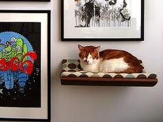 kitty and art