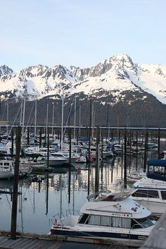 The harbor in Seward, Alaska. One of my favorite places we went while living in Alaska North To Alaska, Alaska Usa, Alaska Travel, Alaska Cruise, Alaska Trip, Travel Usa, Seward Alaska, Anchorage Alaska, Alaska The Last Frontier