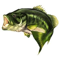Large mouth bass fish hunting vinyl graphic decal