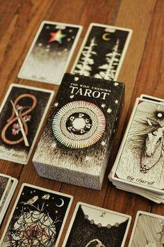 Wild Unknown Tarot Deck by Bona Drag