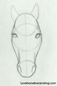 Pencil Drawing Design Mia zeichnen (Top Design Sketch) - For horse pencil drawings, adding the shading to horse head is the last step. Create Sketches step by step - Beginner Horse drawings - Horse Back Riding Tips - Top 5 Training Tips - Career Info Horse Head Drawing, Horse Pencil Drawing, Pencil Drawing Tutorials, Horse Drawings, Art Drawings Sketches, Animal Drawings, Easy Drawings, Art Tutorials, Drawing Animals