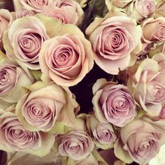 Favourite Dusky Pink Roses From Colombia Flower Market
