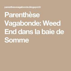 Parenthèse Vagabonde: Weed End dans la baie de Somme