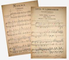 """Il progetto dal nome """"TULLIO SERAFIN, L'ARTE DEL DIRETTORE D'OPERA""""prevede la valorizzazione dell'aspetto umano ed artistico del grande direttore d'orchestra, …"""