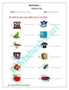 Noun ( संज्ञा ) -  Common Noun (जातिवाचक संज्ञा) Pictorial Worksheet