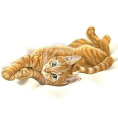 Francien van Westering - Orange Licensing Tattoo Gato, Cat Tattoo, Kittens Cutest, Cats And Kittens, Cute Animal Clipart, Gato Animal, Image Chat, Orange Tabby Cats, Ginger Cats