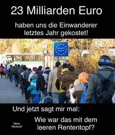 Das sind keine Europäer,das ist der Abschaum der Menschheit...
