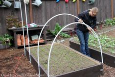 How to Build a Row Cover or Mini Greenhouse Poly Tunnel Greenhouse Cover, Lean To Greenhouse, Greenhouse Effect, Indoor Greenhouse, Greenhouse Wedding, Greenhouse Plans, Tunnel Greenhouse, Portable Greenhouse, Underground Greenhouse
