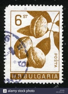 Postage stamps. Bulgaria. 1965. walnut,Fruits. Stock Photo