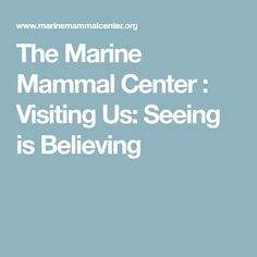 The Marine Mammal Center : Visiting Us: Seeing is Believing