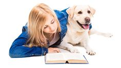 Using professional pet grooming services can get very expensive, very quick. This is only one of the reasons why new and old-time pet owners are looking to learn grooming the old school way: reading some of the best dog grooming books available. #dogs #doggrooming #books