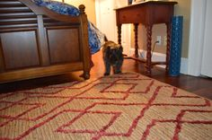 Floors And More, Dash And Albert, Fabrics, Contemporary, Rugs, Design, Home Decor, Homemade Home Decor, Types Of Rugs