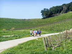 """Around the World with Justin- (California - Paso Robles) Tablas Creek: """"A gorgeous winery with an extremely friendly staff and great tasting wines.  We started the day with a walking tour that was extremely educational about the process of growing the grapes to bottling the wine"""""""