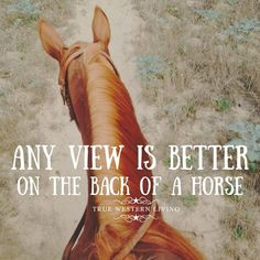 Best views in the world are seen on horseback! Western Quotes, Equestrian Quotes, Country Girl Quotes, Country Life, Hunting Quotes, Barrel Racing Horses, Barrel Horse, Work Horses, Cute Horses