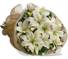 B31 White Delight. Let someone know they are special by sending these fragrant blooms of bright white and cream lilies.