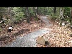 This video comes from our recent site visit at the Sugarloaf Outdoor Center in Carrabassett Valley, ME. Explore Disc Golf is constantly striving to connect significant on-site features through disc golf design as the sport is one of the best ways to move users throughout the entire landscape, all the while fitting in amicably with existing outdoor uses.