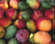 MANGOES Mangoes mangoes~ most heavenly fruit on the planet. Ask me about my mango recipes. Exotic Fruit, Tropical Fruits, Eat Fruit, Fresh Fruit, Cafe Coton, Fresco, Puerto Rico, Big Wave Surfing, Girl Surfing