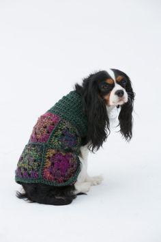 The Hippie Dog Sweater: free pattern Dog Sweater Pattern, Crochet Dog Sweater, Dog Pattern, Free Pattern, Sweater Patterns, Granny Square Crochet Pattern, Crochet Granny, Crochet Patterns, Knitting Patterns
