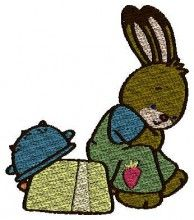Cute Bunny embroidery hoops brother pe 500