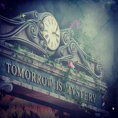 Tu y yo en #tomorrowland :) | Via Tomorrowland Radio at http://www.tomorrowlandradio.com