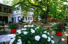 Pelion in Spring 2017 Greece Travel, Mansions, House Styles, Spring, Amazing, Plants, Beautiful, Destinations, Traveling