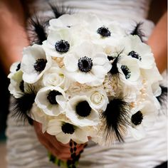 The bouquets will be white anemones, white hydrangeas, black ostrich feathers, patience garden roses, and gray dusty miller wrapped in layered charcoal gray and blue ribbon.  The bridesmaids will have ivory spray roses instead of the garden roses, so the bridal bouquet stands out.  We will have more feathers than pictured here....